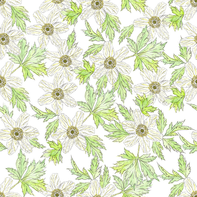 Wood anemone pattern (c) Ella Johnston ellasplace.co.uk