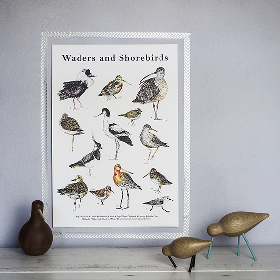 Waders poster by Ella Johnston. ellasplace.co.uk