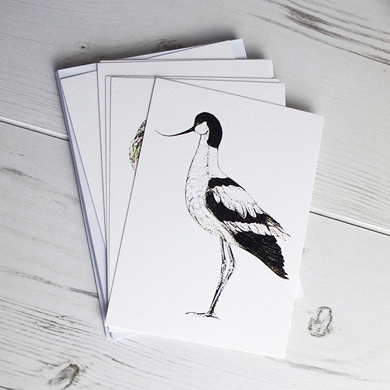 Waders postcards by Ella Johnston. ellasplace.co.uk