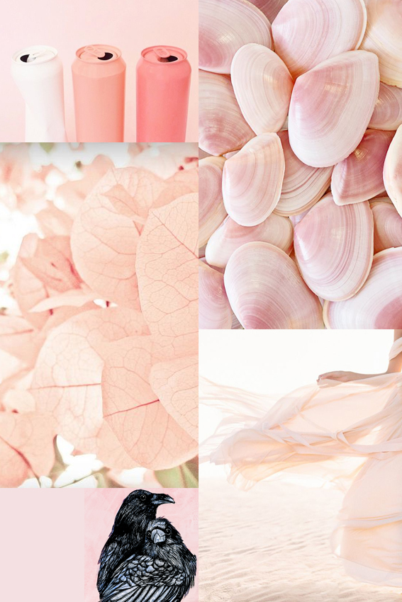Moodboard Monday Blush