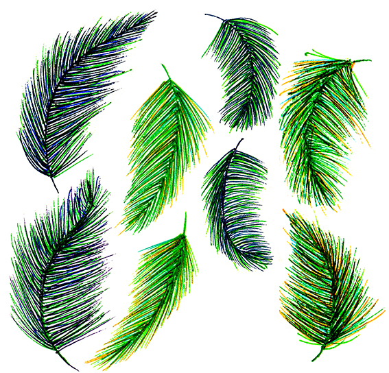 Green feathers Ella Johnston
