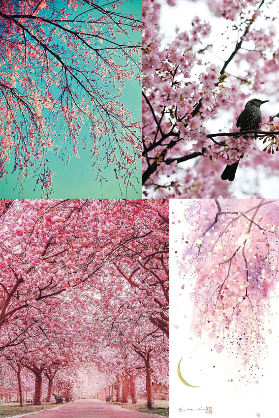 Monday moodboard: Cherry Blossom Ellasplace.co.uk