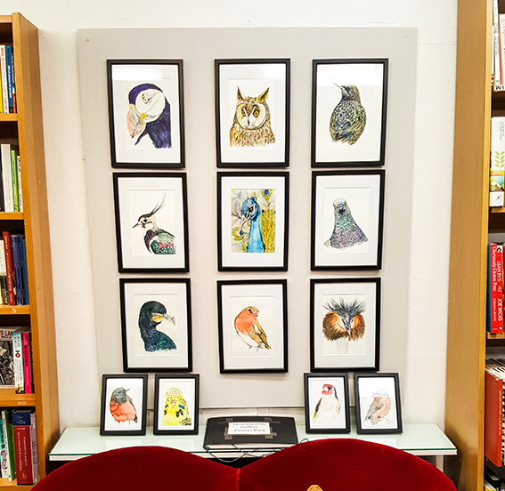 Birds at Wivenhoe Books