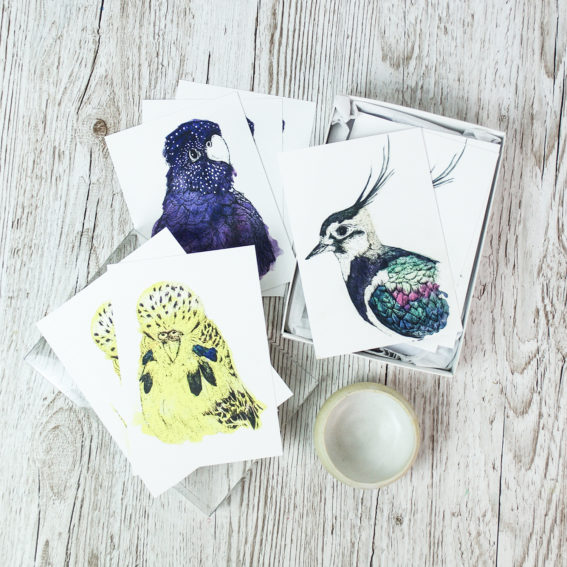 Bird portrait postcards (C) Ella Johsnton