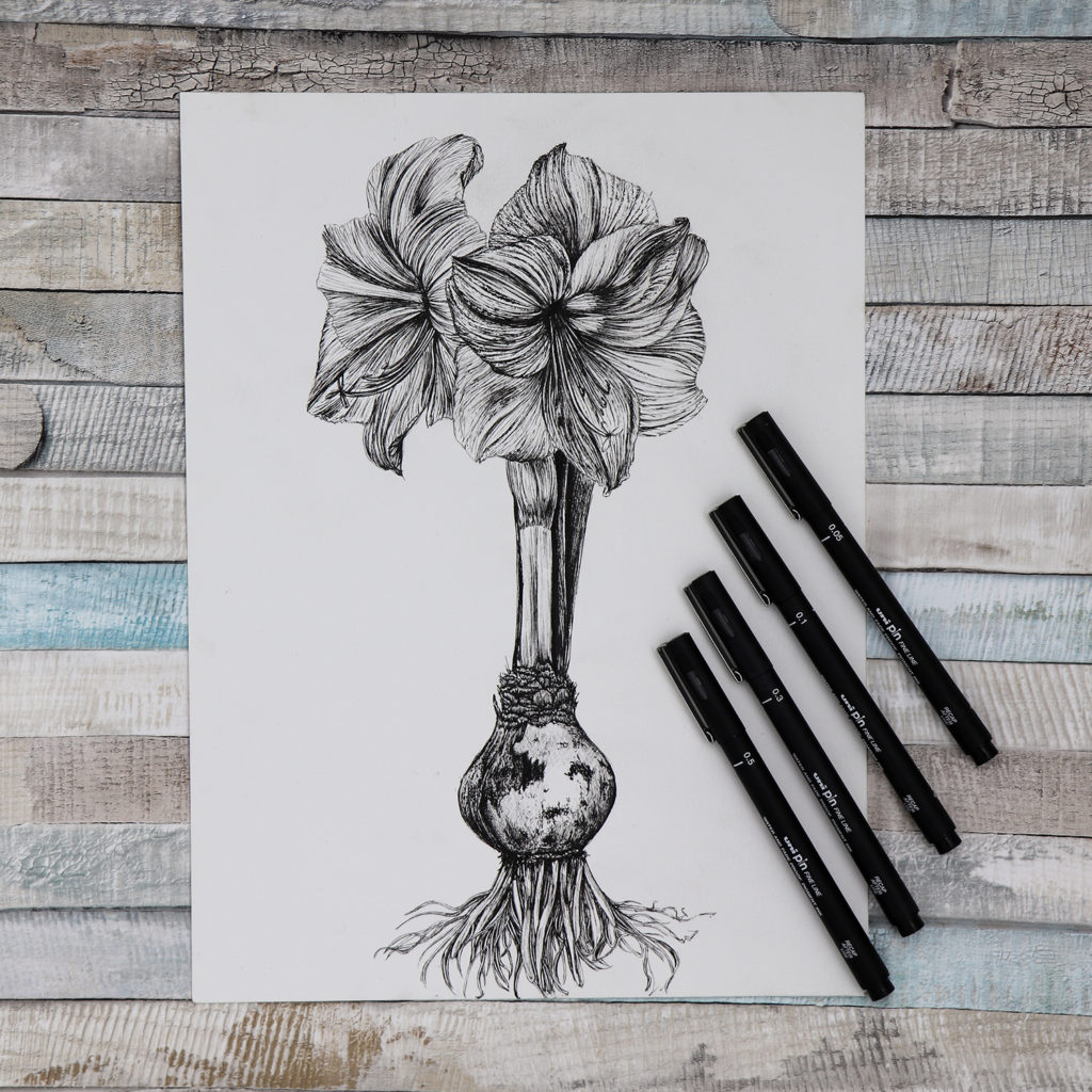 Uniball PIN pen , amaryllis drawing