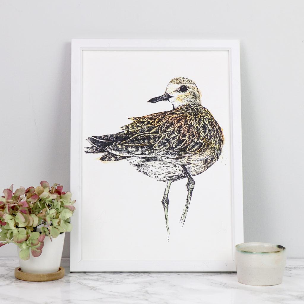A4 Limited Edition Golden Plover Giclee Print (c) Ella Johnston