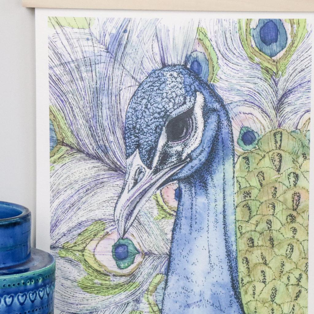 A3 Limited Edition Peacock Giclee Print (c) Ella Johnston