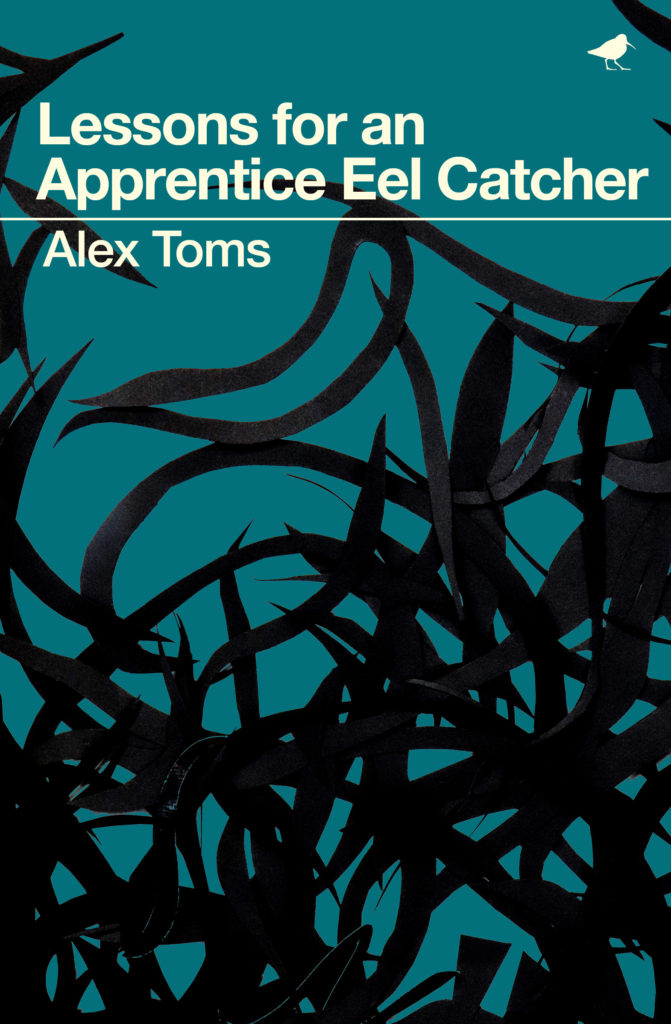 Cover, Lessons for an Apprentice Eel Catcher, Alex Toms. Published by Dunlin Press.
