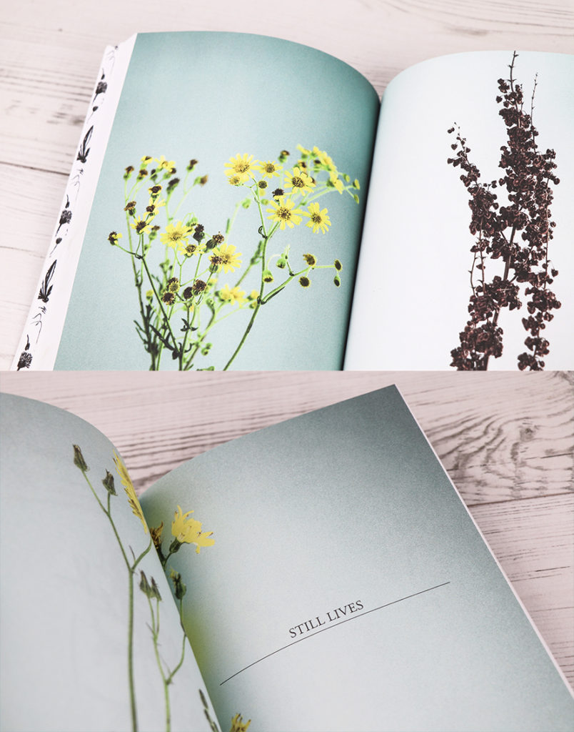 The Orphaned Spaces, photography and design by Ella Johnston (c) Dunlin Press