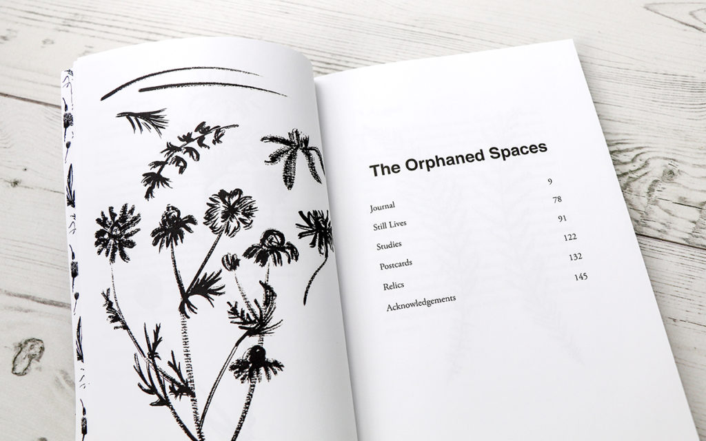 The Orphaned Spaces, illustration and design by Ella Johnston (c) Dunlin Press