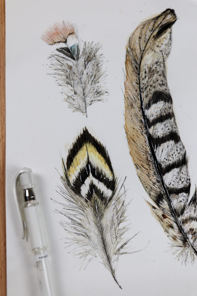Feathers, work in progress