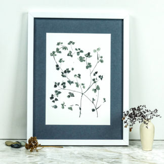Tree blossom ink drawing print, Ella Johnston