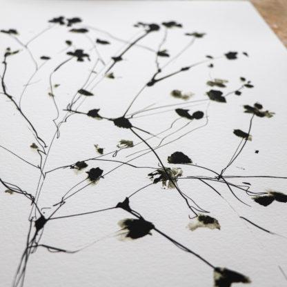 Large Wild blossom ink drawing print, Ella Johnston