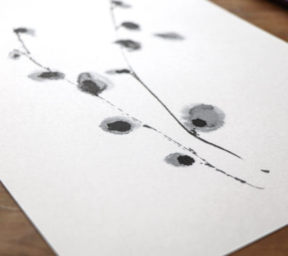 Goat willow – Salix caprea print. Originally created in pen, brush and Indian ink on sumi paper by Ella Johnston