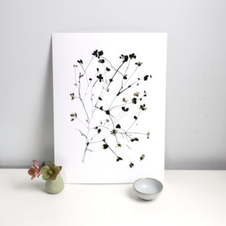 Large Wild blossom ink drawing print, Ella Johnston