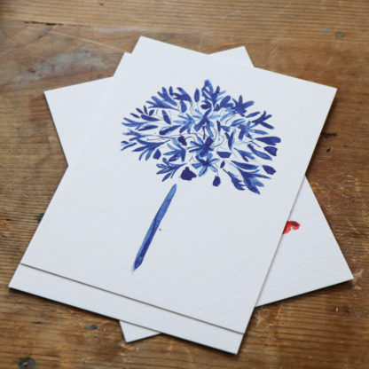 Colourful botanicals, six-piece illustrated postcard collection