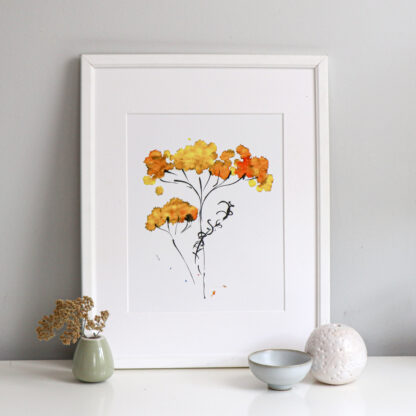 Yellow Achillea A4 fine art print, Ella Johnston